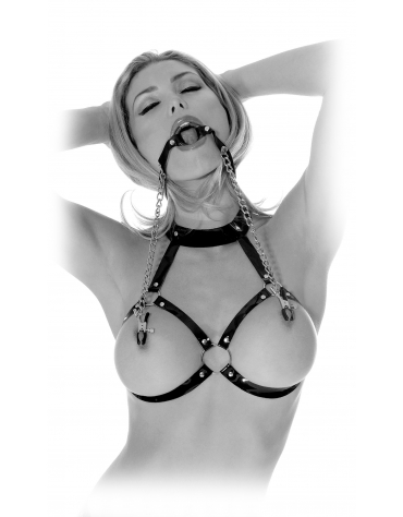 FETISH FANTASY SERIES O-RING GAG & NIPPLE CLAMPS
